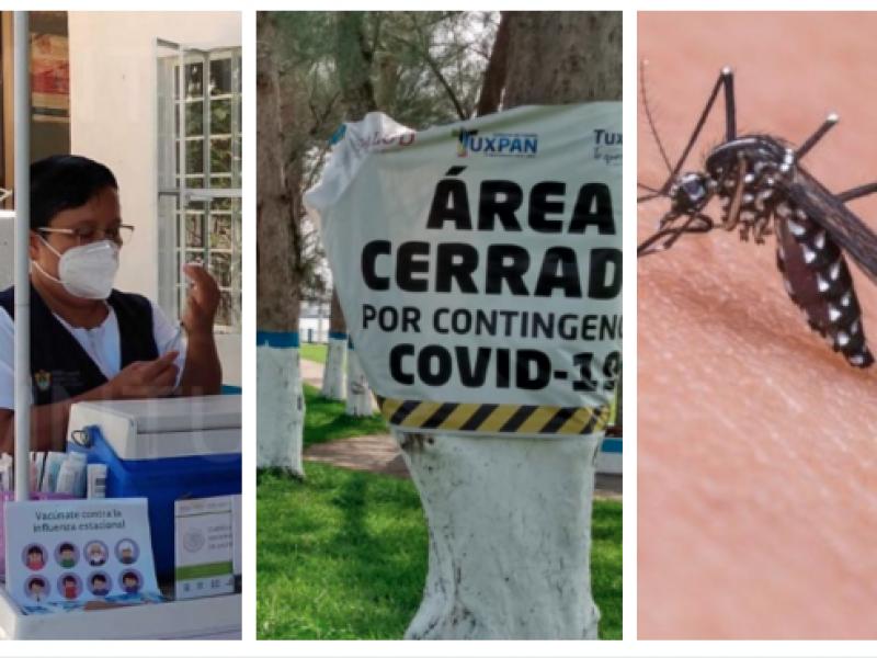 Alerta ante Influenza, Covid19 y Dengue