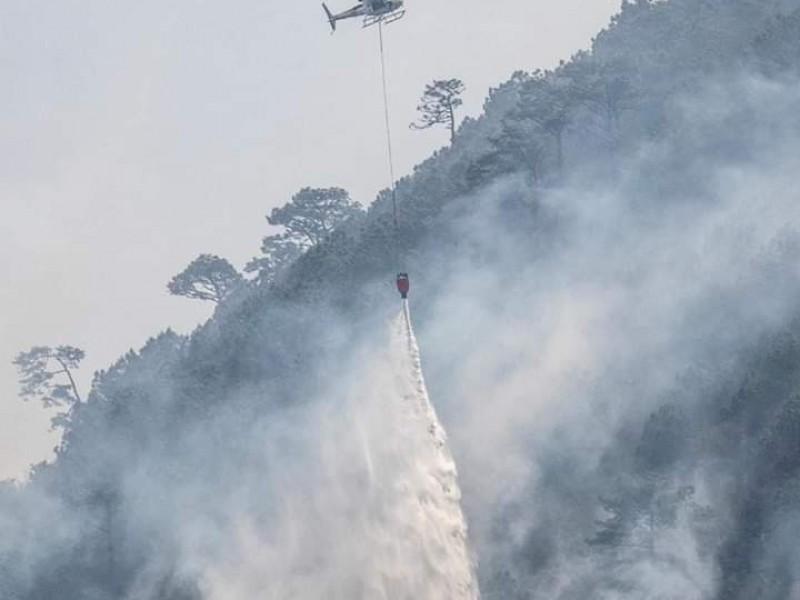 Alerta entidad veracruzana, ante incendios