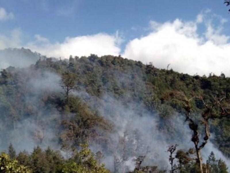 Alerta roja por incendios en regiones de Chiapas