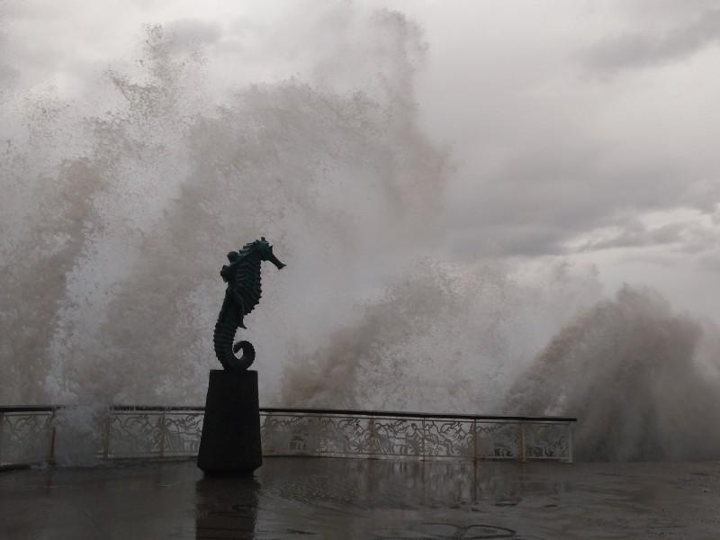 Alto oleaje, un espectáculo en Puerto Vallarta