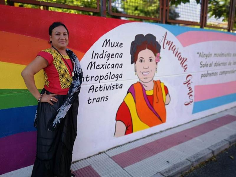 Amaranta, activista indígena oaxaqueña lucha por la titularidad del CONAPRED