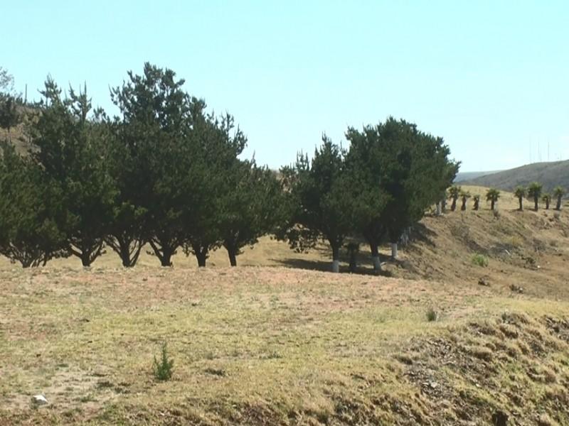 Ampliarán oferta de turismo de naturaleza en Zacatecas