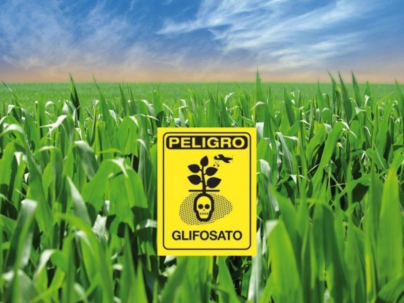 Años tardará la tierra para eliminar contaminación por glifosato