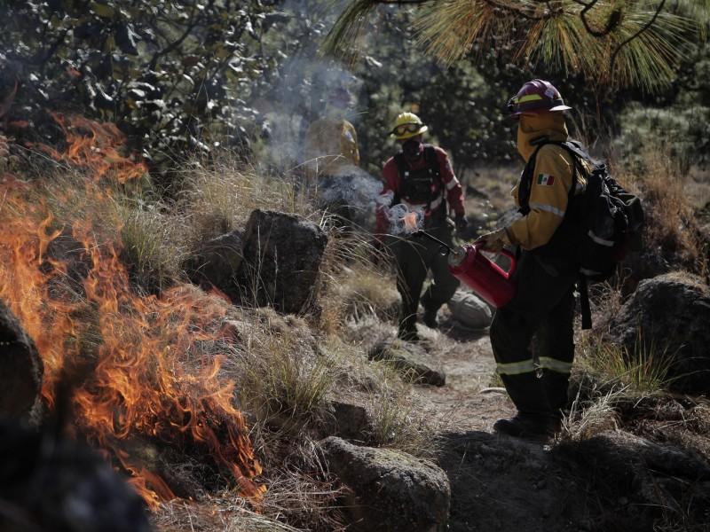 Ante aumento de incendios forestales, arrancan en Jalisco acciones preventivas