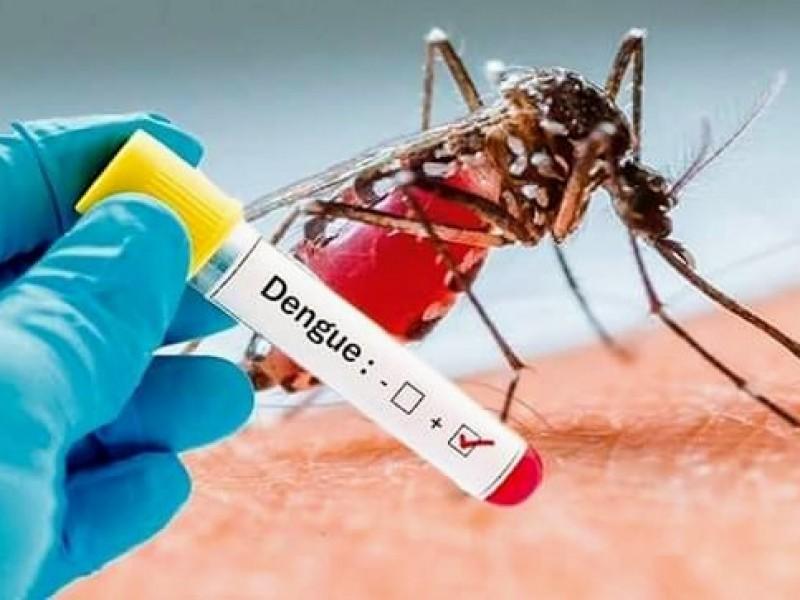 Ante síntomas de dengue, piden no automedicarse