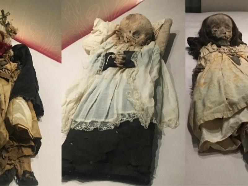 Anuncian exposición de momias zacatecanas
