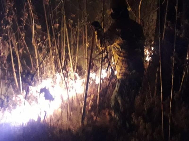 Apagan incendio en El Centinela