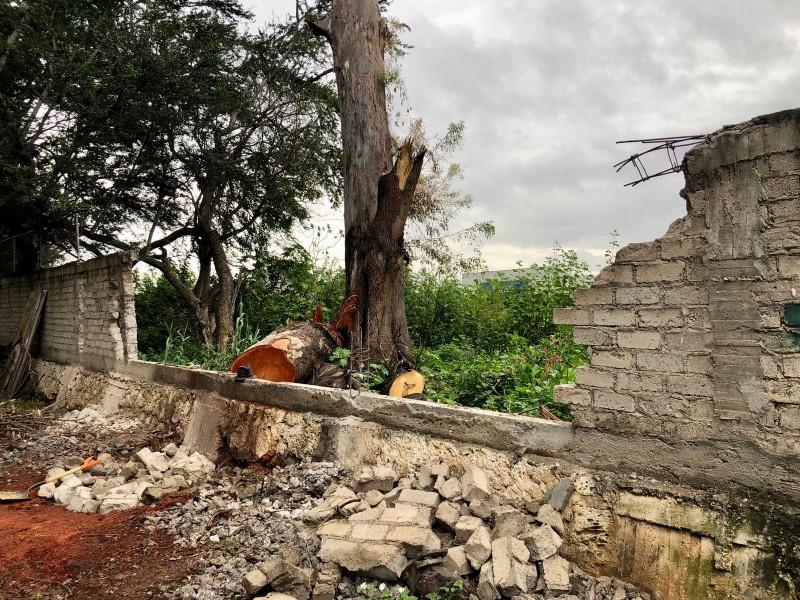 Apoyan con la reconstrucción de barda perimetral en escuela zamorana