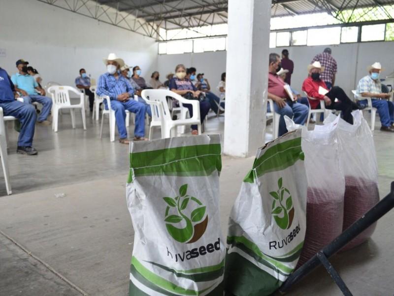 Apoyan con semilla temporaleros de Mocorito