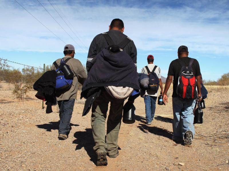 Apoyo y renuncia en Plan Migratorio de AMLO