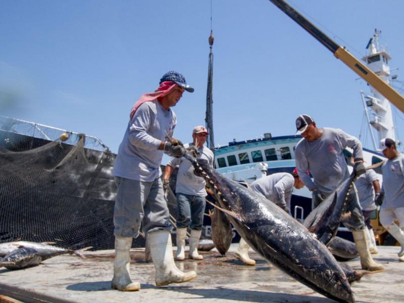 Apoyos a pescadores son importantes pero insuficientes: Narro Céspedes