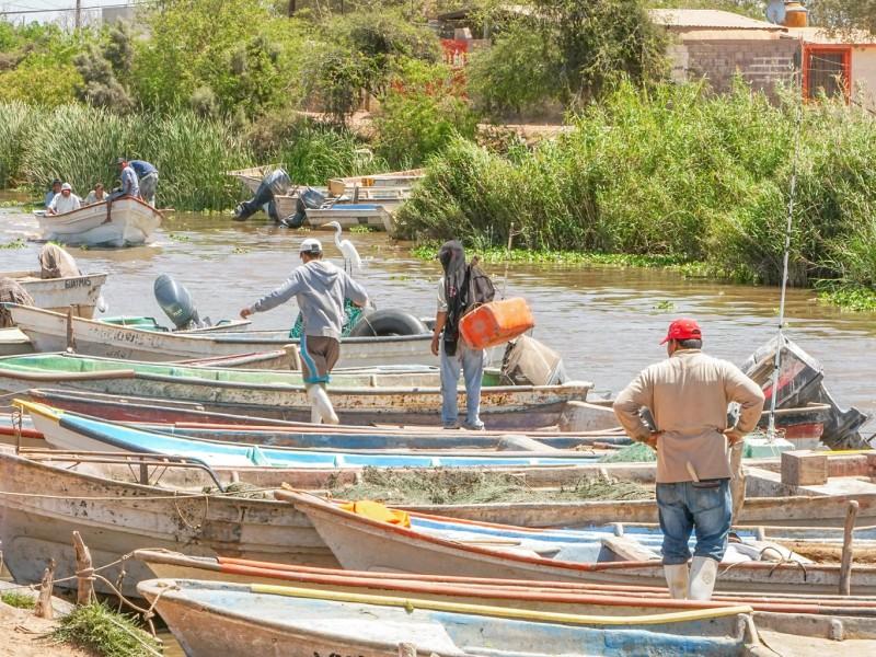 Apoyos de Bienpesca, un respiro para pescadores de la ZN