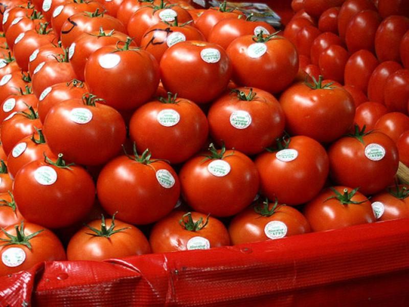 Aranceles 'tienen en la mira' al tomate mexicano