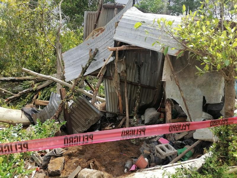 Árbol cae sobre vivienda  y hombre pierde la vida