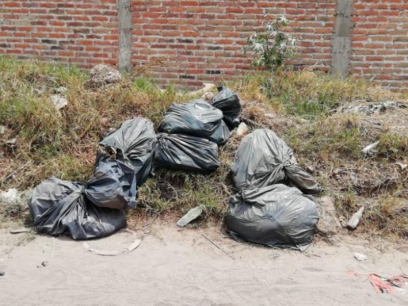 Arman 12 cadáveres con restos encontrados en Cajetes