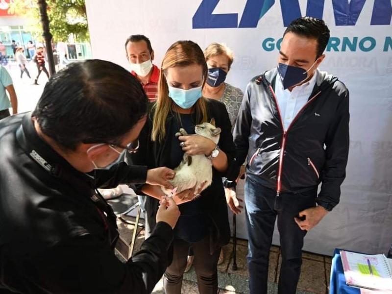 Arrancó campaña de vacunación canina y felina en Zamora