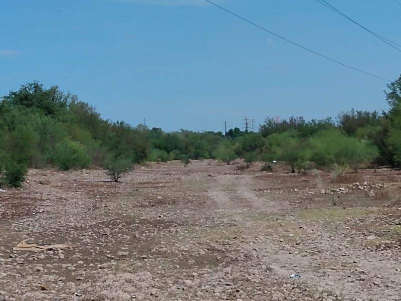 Arroyos de Guaymas 90% limpios