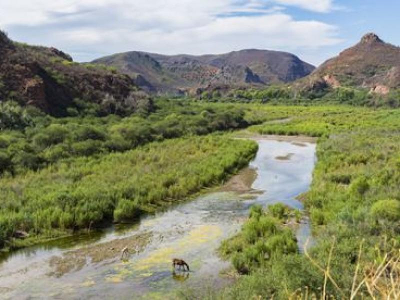 Atención médica en Río Sonora atenderá Plan Integral de Cananea