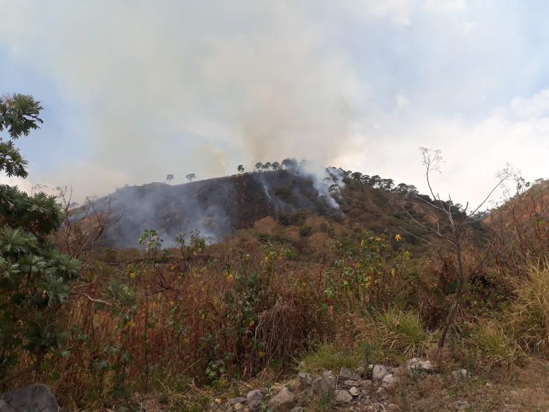 Atiende CONAFOR incendio en cerro San Juan