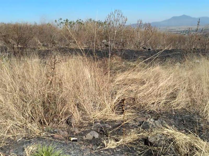 Aumentan en Sahuayo incendios de pastizales