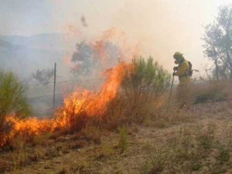 Aumentan incendios forestales en Guaymas