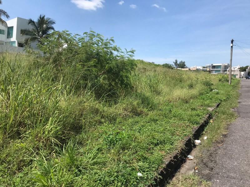 Aumentan los terrenos baldíos en el fraccionamiento Costa de Oro