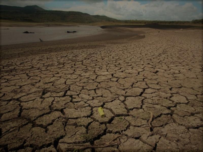 Aumentan municipios afectados por sequía en Sinaloa.
