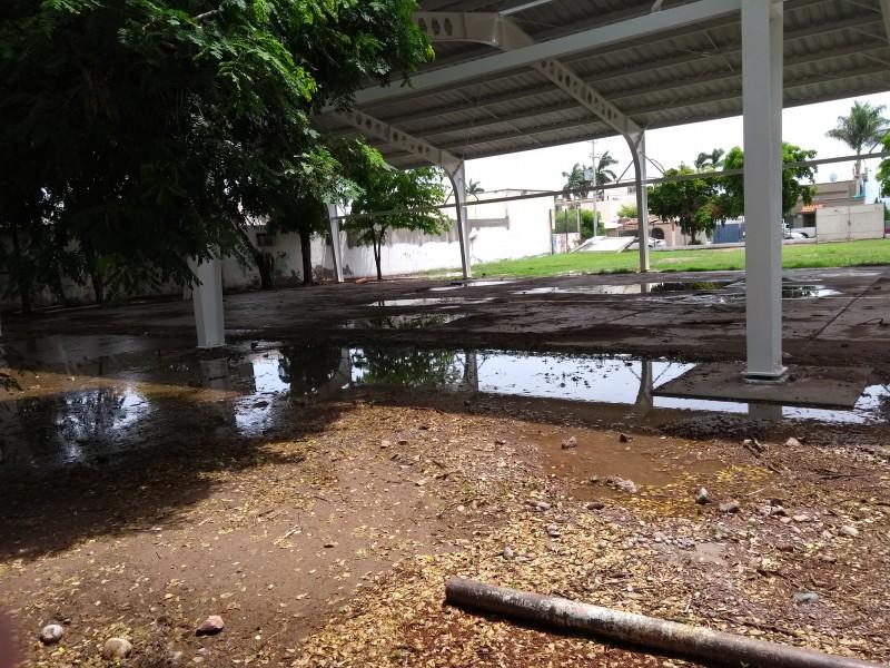 Ausentismo en escuelas por lluvias