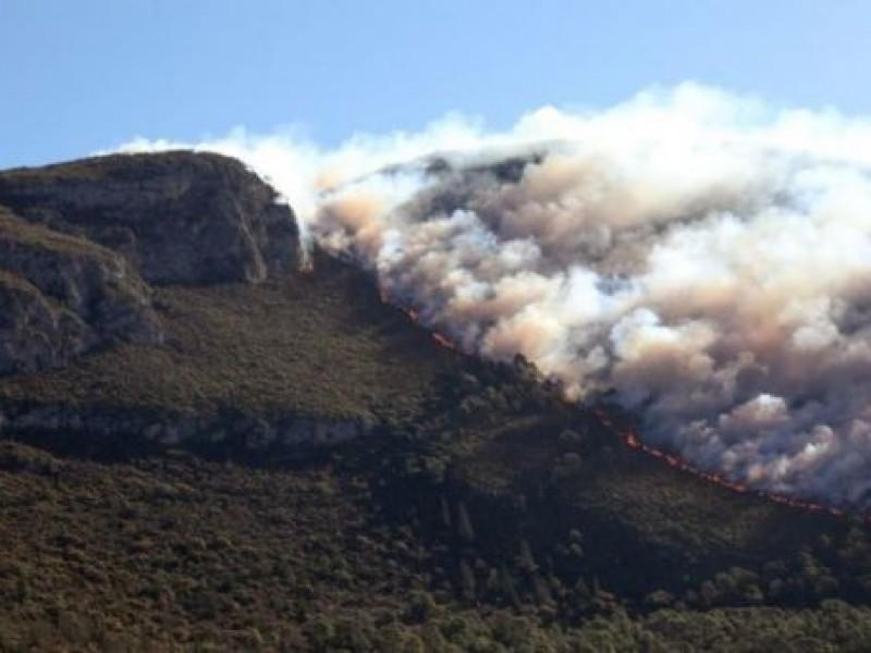 Autoridades combaten incendio forestal en Coahuila y Nuevo León