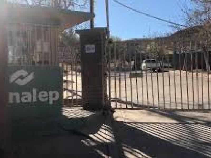 Autorizan mas lugares para nuevo ingreso en CONALEP Nogales
