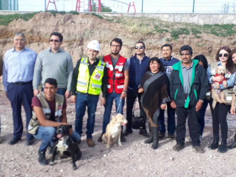 Avanza Centro de Bienestar Animal en la capital