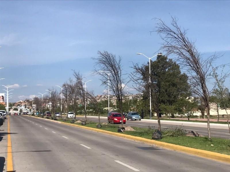Avenida Gómez Morín será utilizada como área deportiva