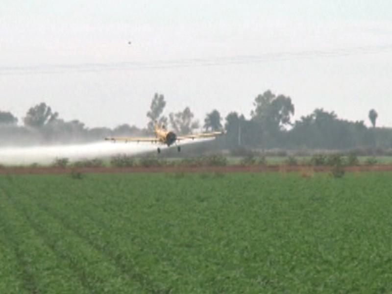 Avionetas fumigadoras recibirán sanciones por parte de Aeronáutica civil