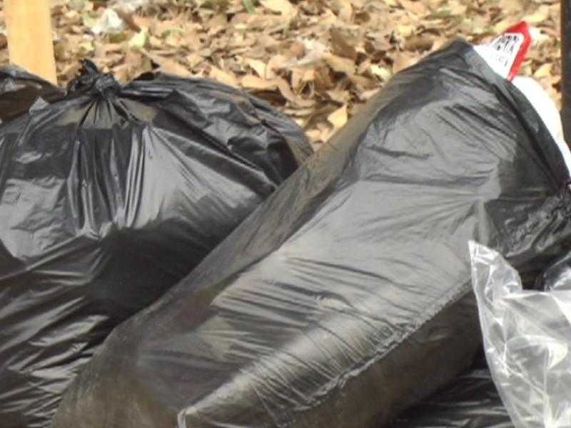 Ayuntamiento multa por basura acumulada en lotes