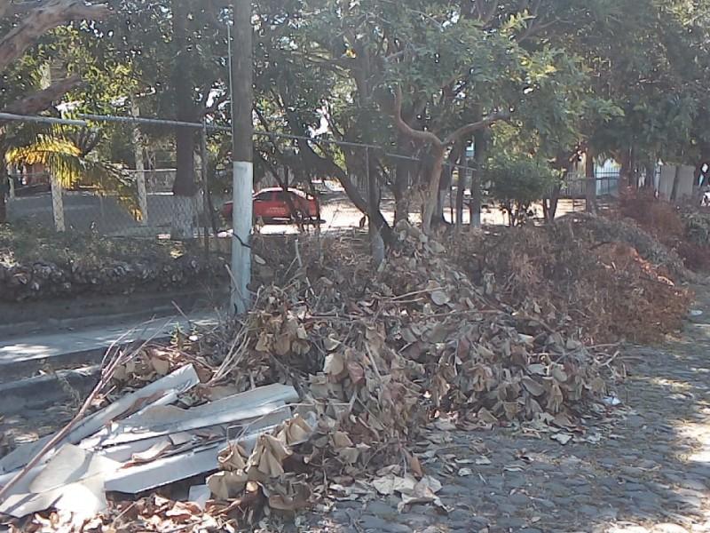 Ayuntamiento VdeA incumple recolección de ramas y basura en escuela