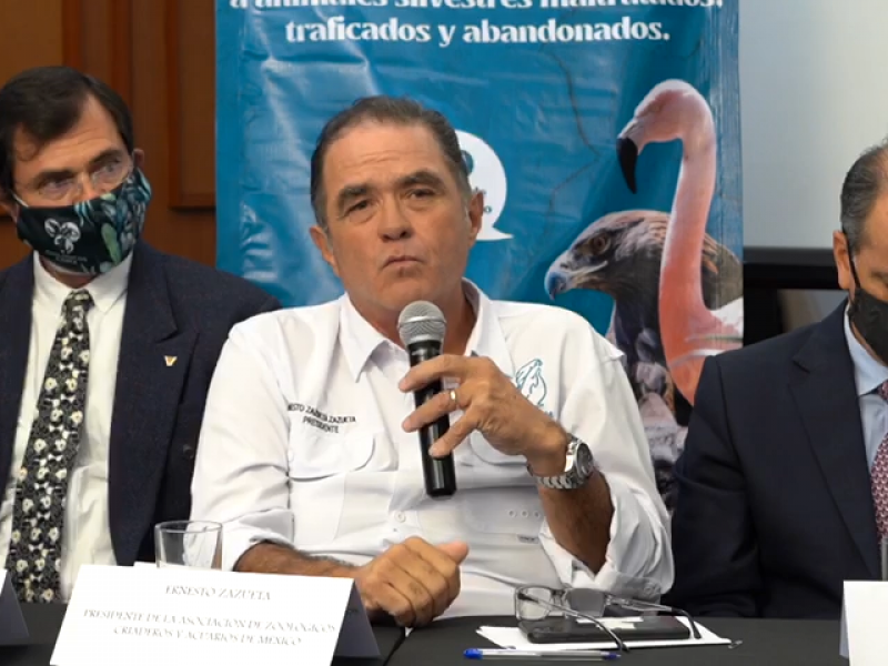 AZCARM ADVIERTE QUE PODRÍA AUMENTAR EL TRÁFICO DE ESPECIES