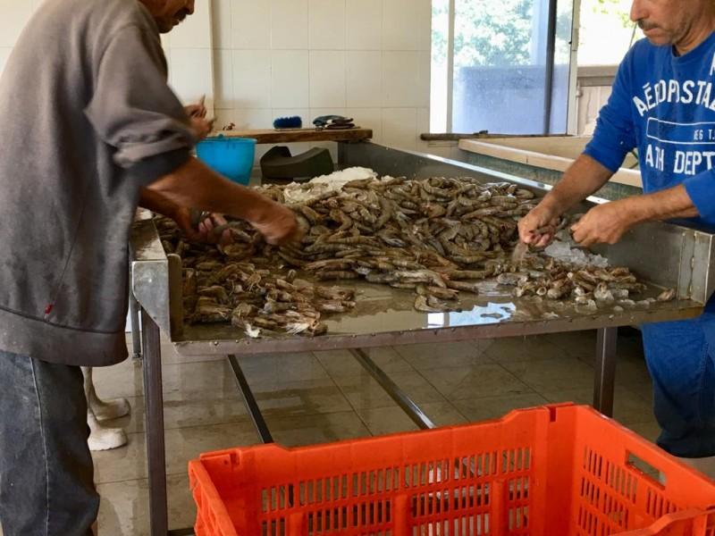 Baja demanda de productos del mar por cierre de restaurantes