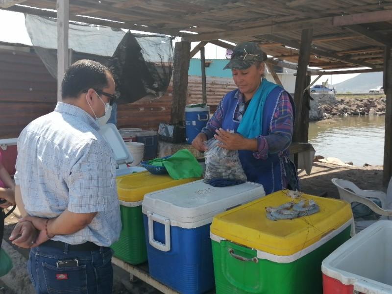 Baja venta de camarón en la región