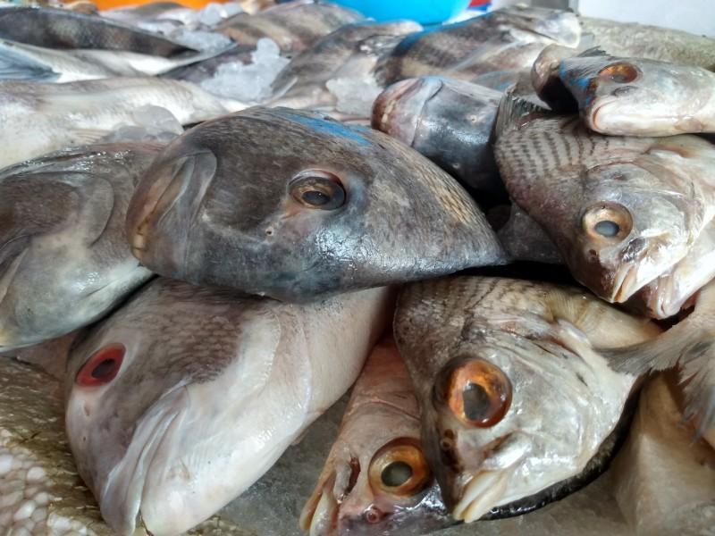 Bajas ventas reportan pescaderías y marisquerías de mercados