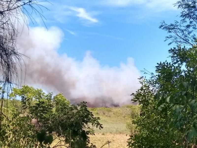 Bajo control, incendio de pastizales en Tuxpan