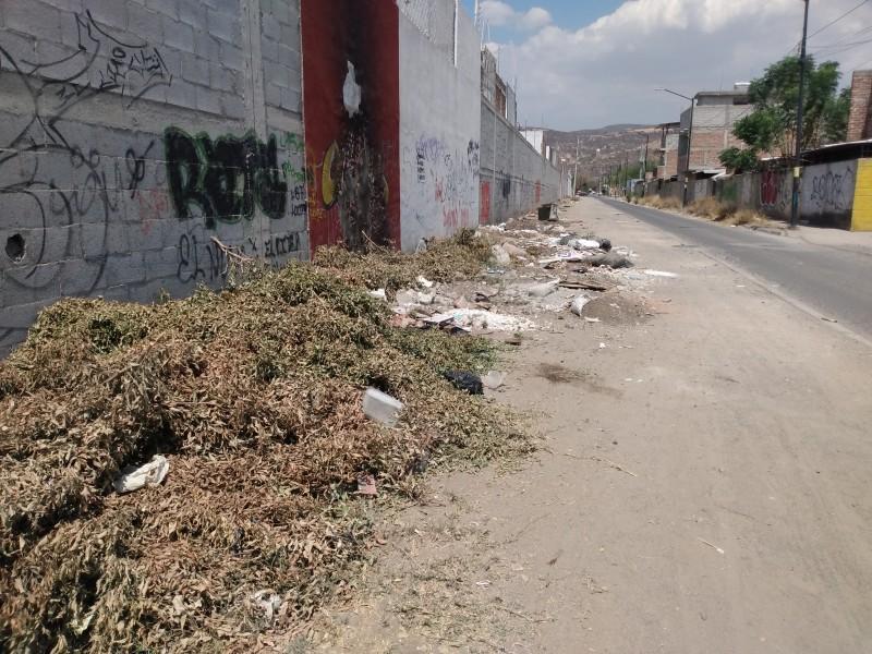 Basura genera inseguridad en Villas de San Juan