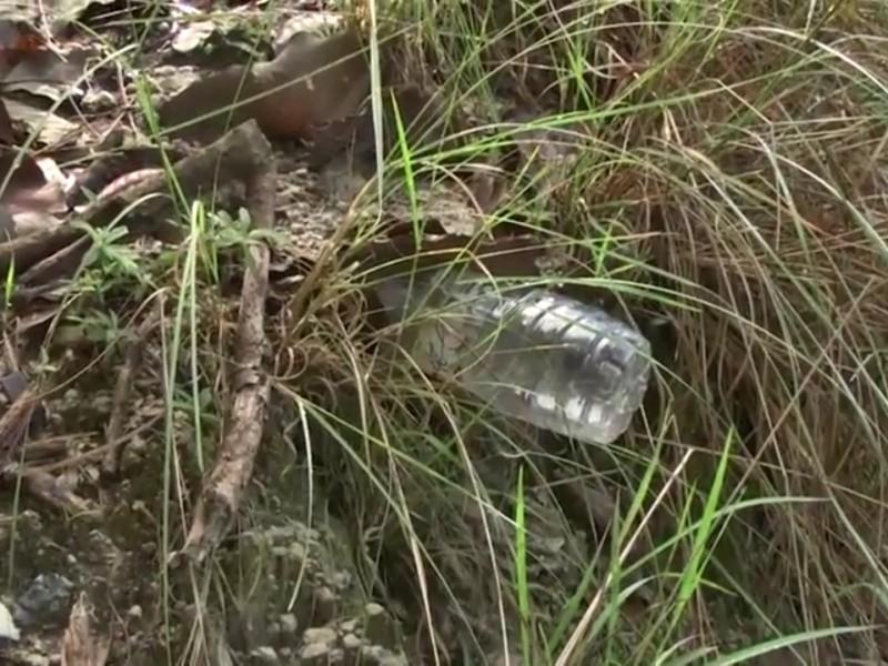 Basura y más basura en ANP de bosque