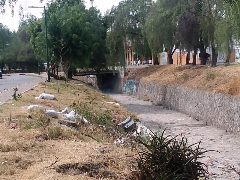 Basura y quemas contaminan en Arroyo del Muerto