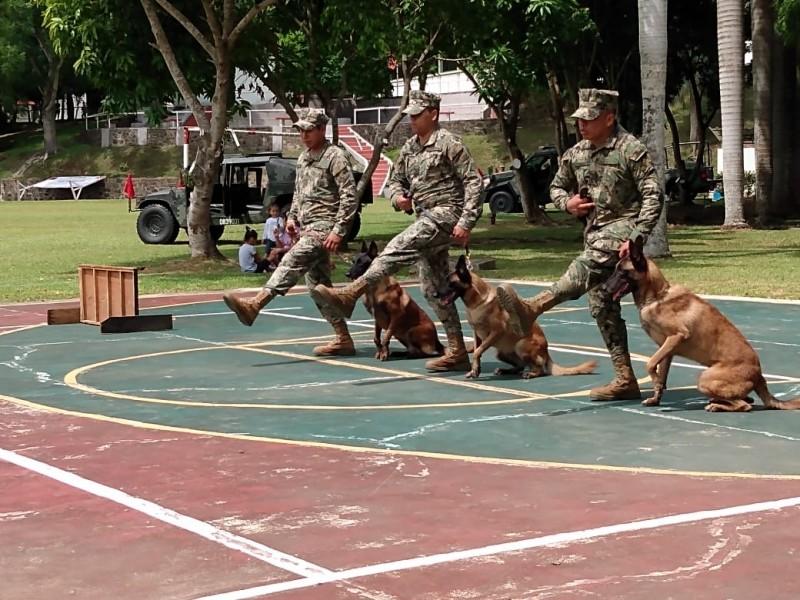 Binomios caninos, parte integral de SEDENA y SEMAR