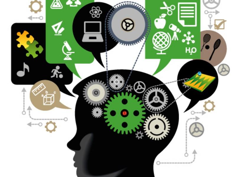 Biomarcador potencial para el aprendizaje a largo plazo