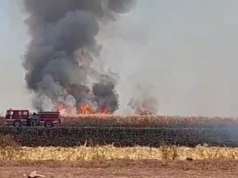 Bomberos en Etchojoa no asistirán a quemas de gavilla