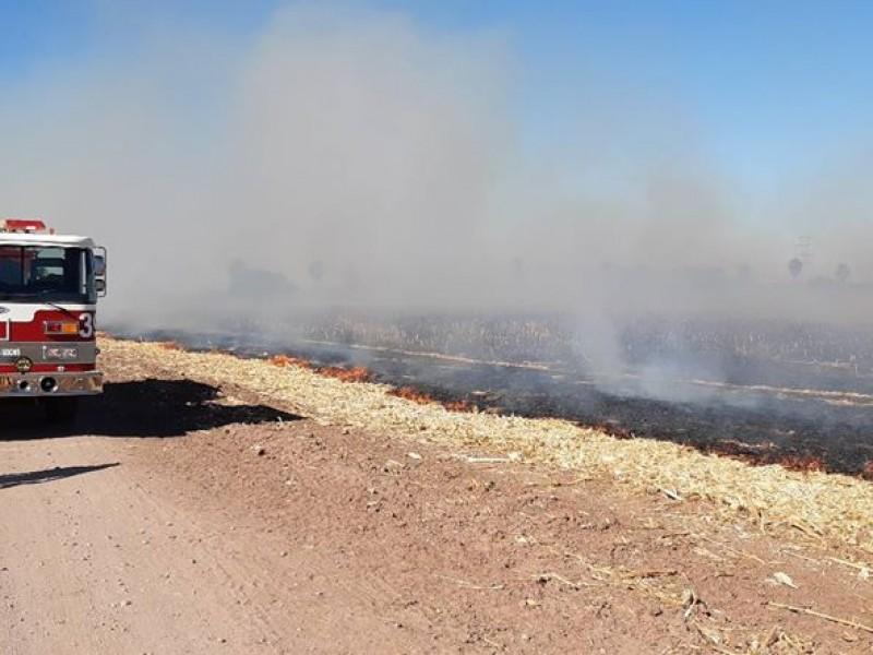 Bomberos llaman a erradicar quema de soca