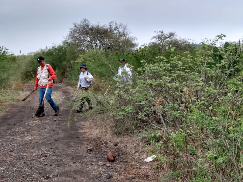 Brigadas de búsqueda de personas desaparecidas llegan a Zamora