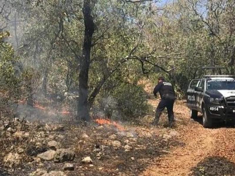 Brigadistas intentan controlar incendio en Jalpan