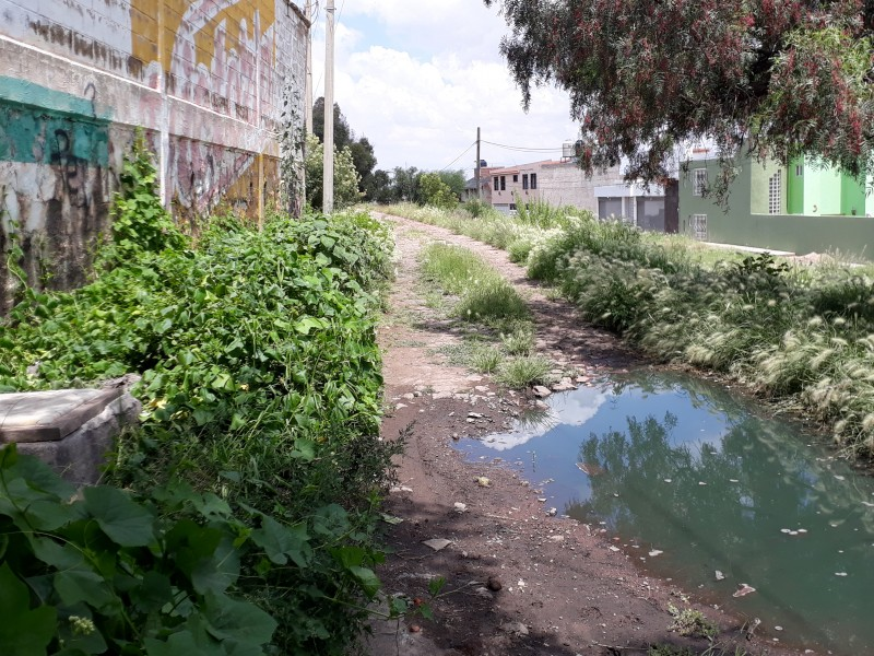 Brotan aguas negras en calles de colonia Tecnológica